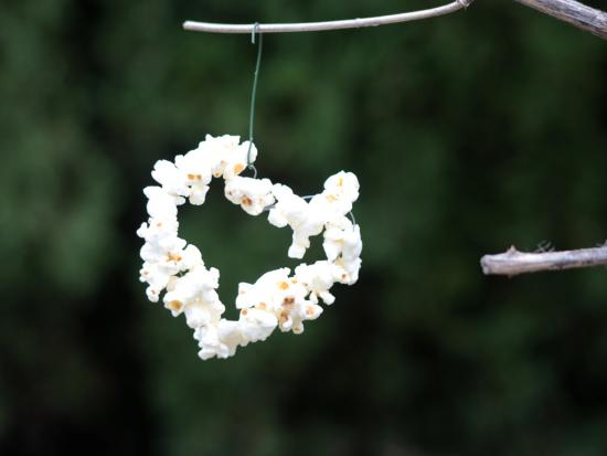 Heart-Shaped Popcorn Birdfeeder