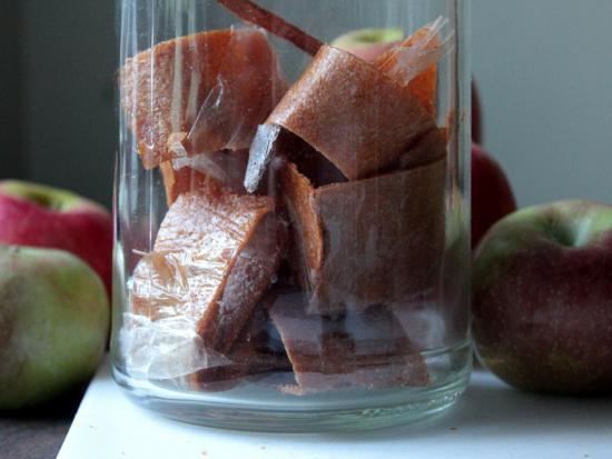 Homemade Fruit Leather and Apple Chips