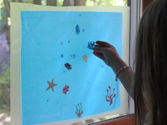 Window Aquarium