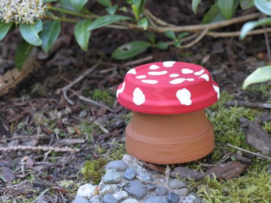 Garden Toadstool