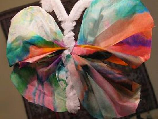 Butterfly Coffee Filters