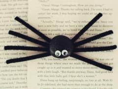 Spooky Stone Spiders