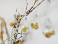 Terrarium Ornaments