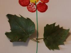 Flower Making with Corks