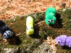 Pipe Cleaner Caterpillar