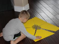 Poster Board Puzzles