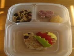 Turkey Bento Lunch