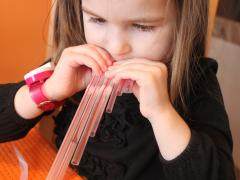 Straw Flute