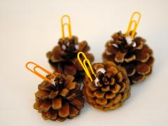 Pinecone Place Settings