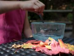Glycerin Leaves