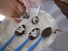 Chocolate Dipping Spoons