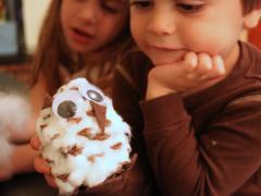 Pinecone Snow Owl