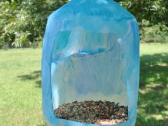 Milk Jug Bird Feeder