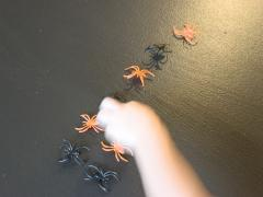 Patterning with Bugs