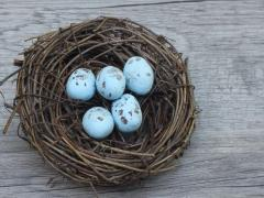 Miniature Speckled Eggs