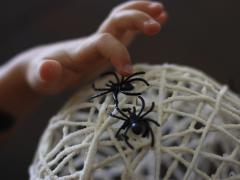 3-D Yarn Spider Web