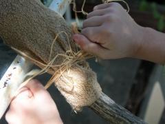 Hobby Stick Animal
