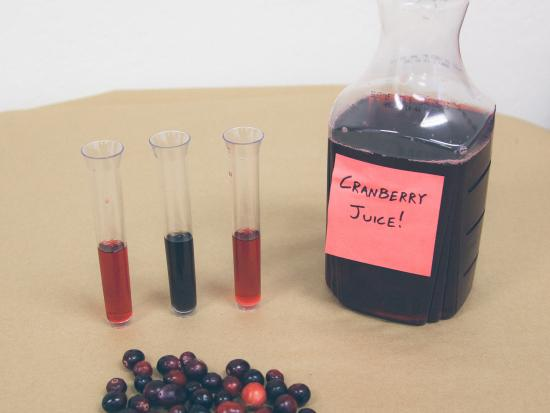 cranberry-chemistry-kids-experiments-kiwi-crate