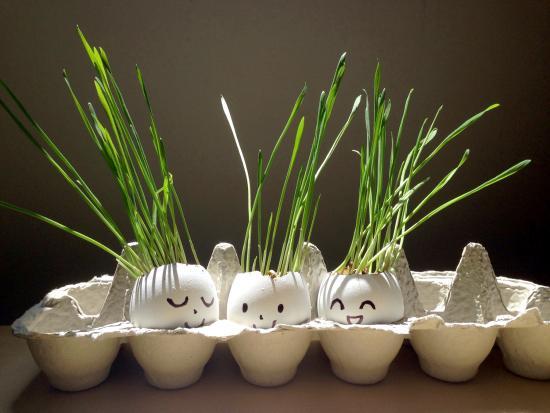 eggheads-kindness-creative-DIY-Kiwi-Crate-kids