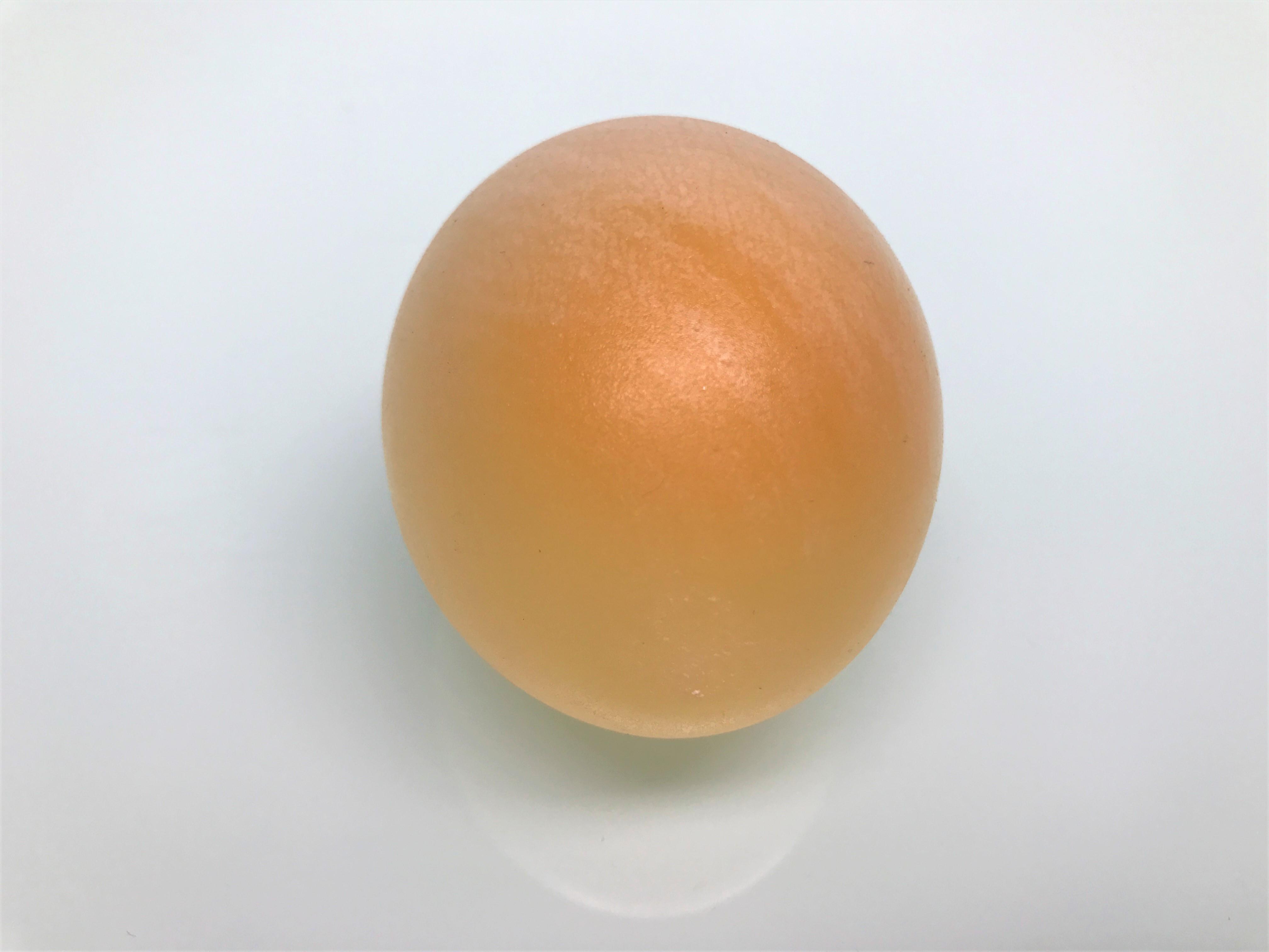 Pictures of eggs in vinegar